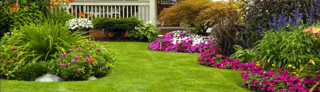 landscaping services to improve your home
