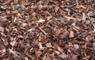 difference between bark and mulch